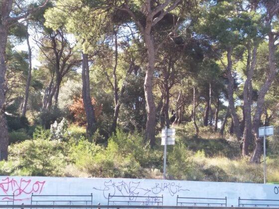 Λόφος Λεβίδη , Λεωφ.Μαραθώνος - τόπος εκτέλεσης και ταφής των αγωνιστών